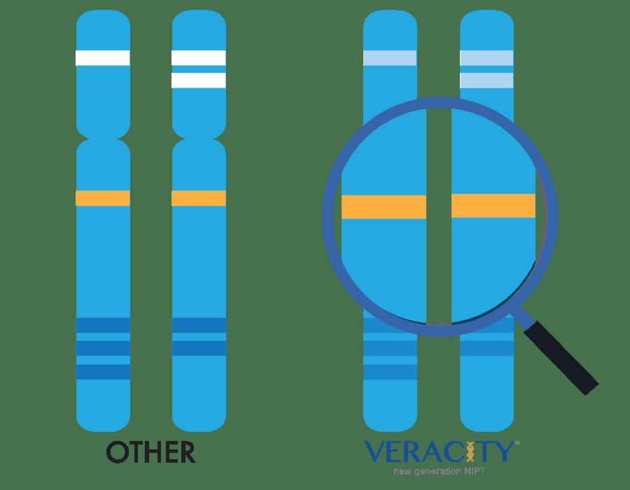 genomiki analush